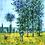 """Thumbnail: Carré Claude Monet """"Sous les peupliers"""""""
