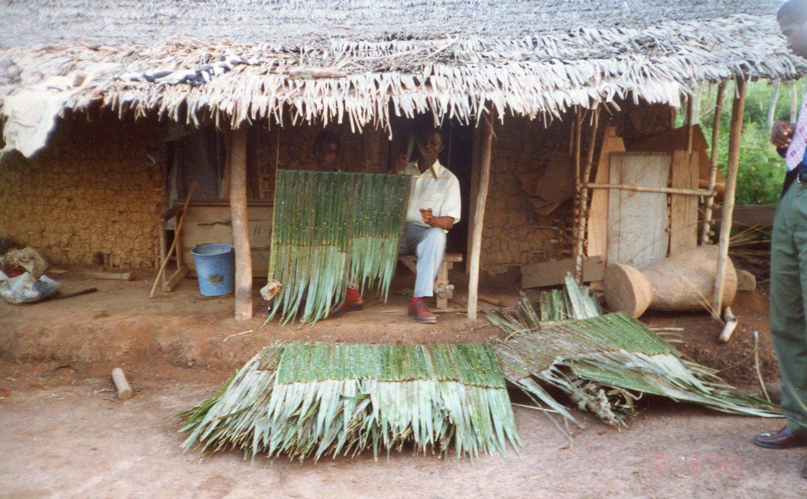 cote d'ivoire (25)