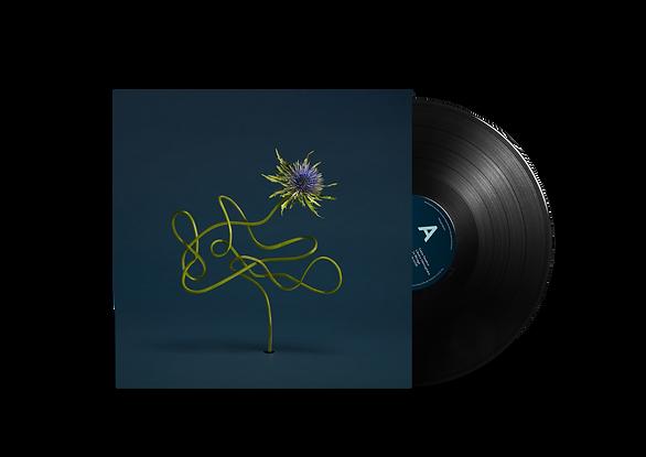 Vinyl Record PSD MockUp JB.png