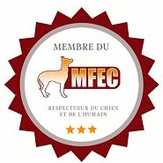 badge mfec