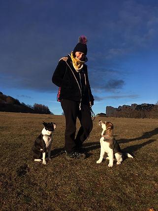 éducateur canin Drôme et Ardèche