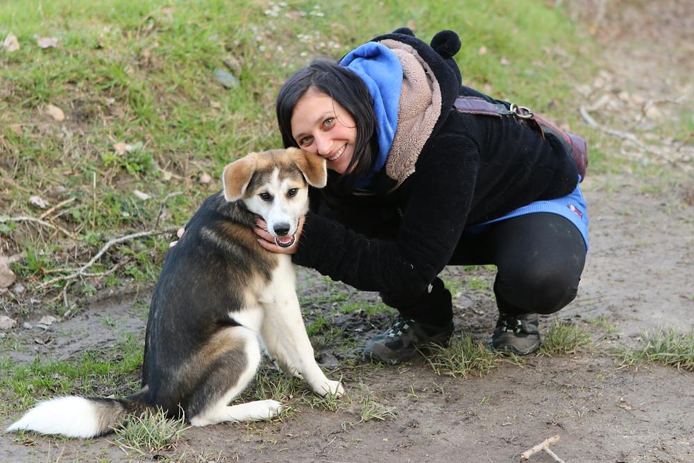 Educateur canin chiot