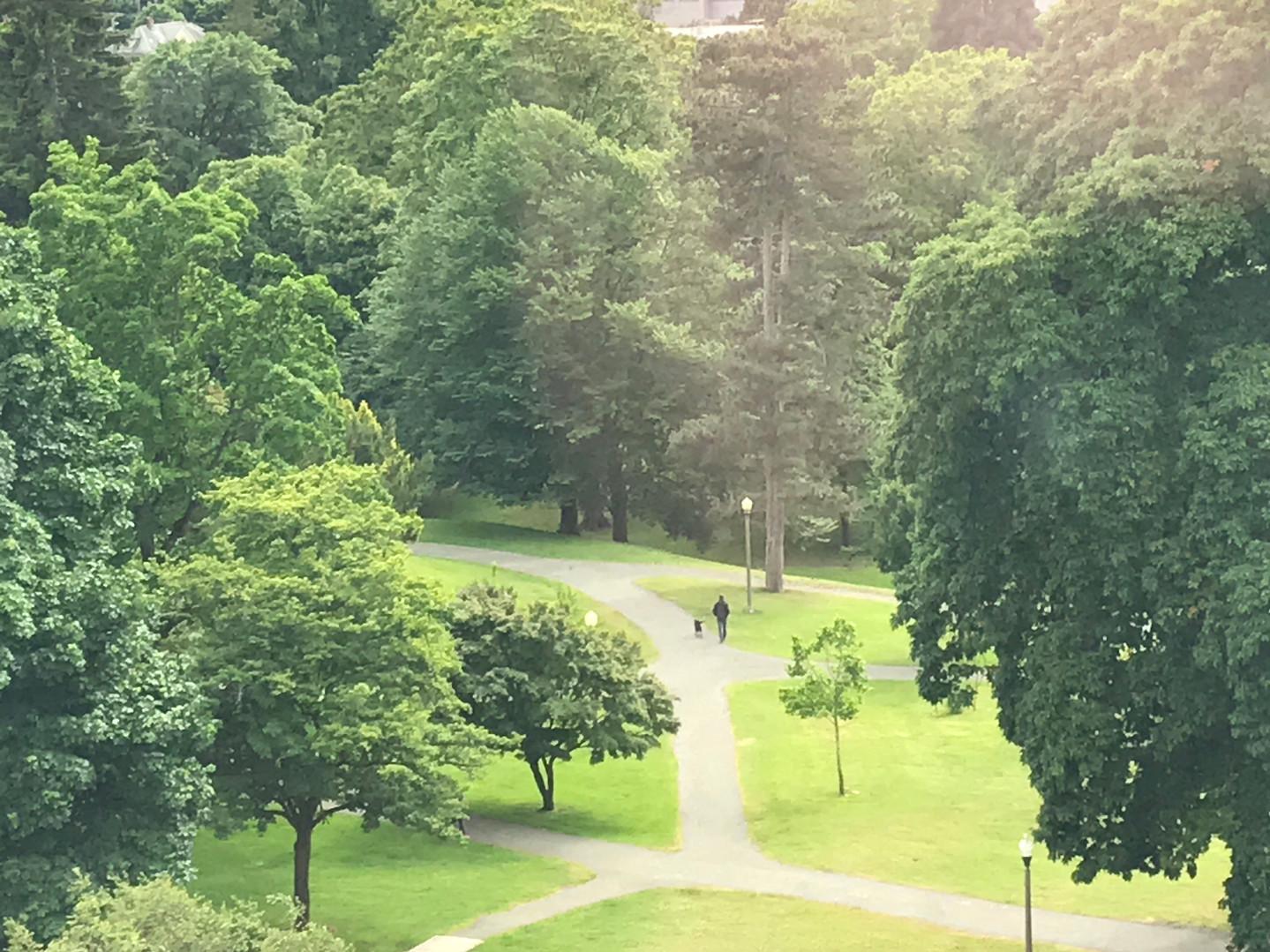 Wright Park