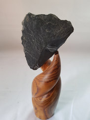 Au creux de mon baobab
