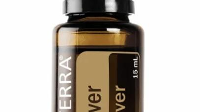 Vetiver Essential Oil - 15ml