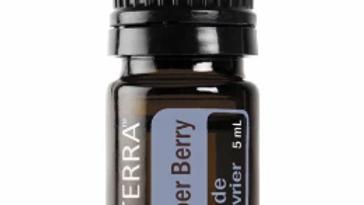 Juniper Berry Essential Oil - 5ml