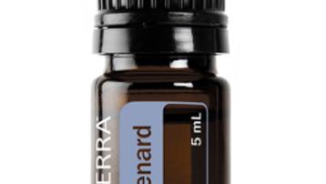 Spikenard Essential Oil - 5ml