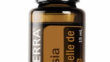 Cassia Essential Oil - 15ml