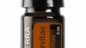 Arborvitae Essential Oil - 5ml