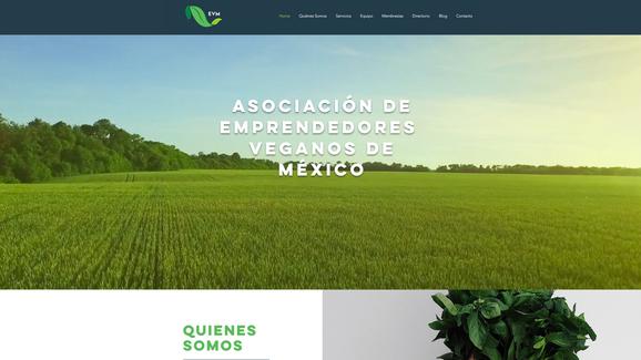 www.aevm.mx
