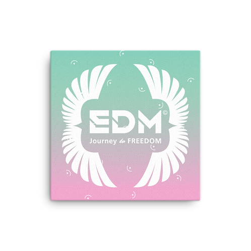 Canvas Assorted Sizes - EDM J to F Wings Spare/Pink Turquoise Gradient