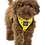 Thumbnail: Fuzzyard Monkey Mania Dog Harness - Small