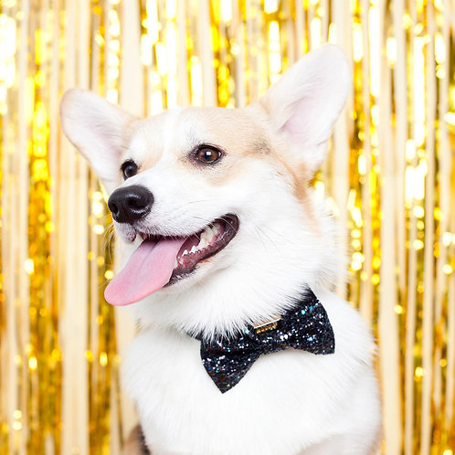 Midnight Glitter Dog Party Bow Tie