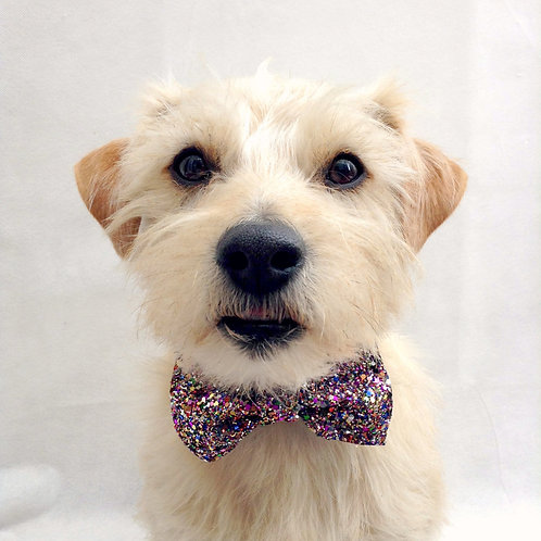 Multi Glitter Dog Party Bow Tie