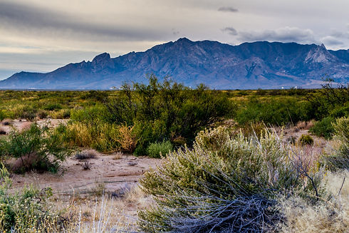 West Texas Landscape of Desert Area with