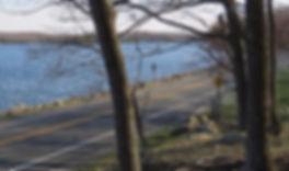 Harriman State Park_edited_edited.jpg