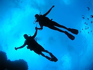two divers in blue water