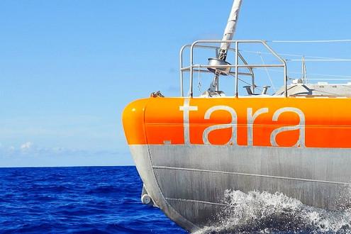 agnès b._TARA探險船登訪