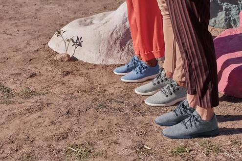 Allbirds 用甘蔗纖維和羊毛製鞋