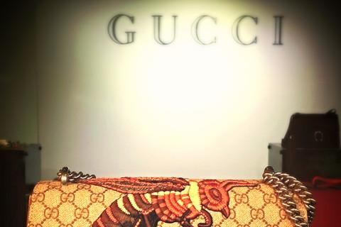 文青也愛精品 Gucci ?