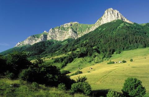 前往南法 Ardeche,那個令人嚮往的蜜蜂家園