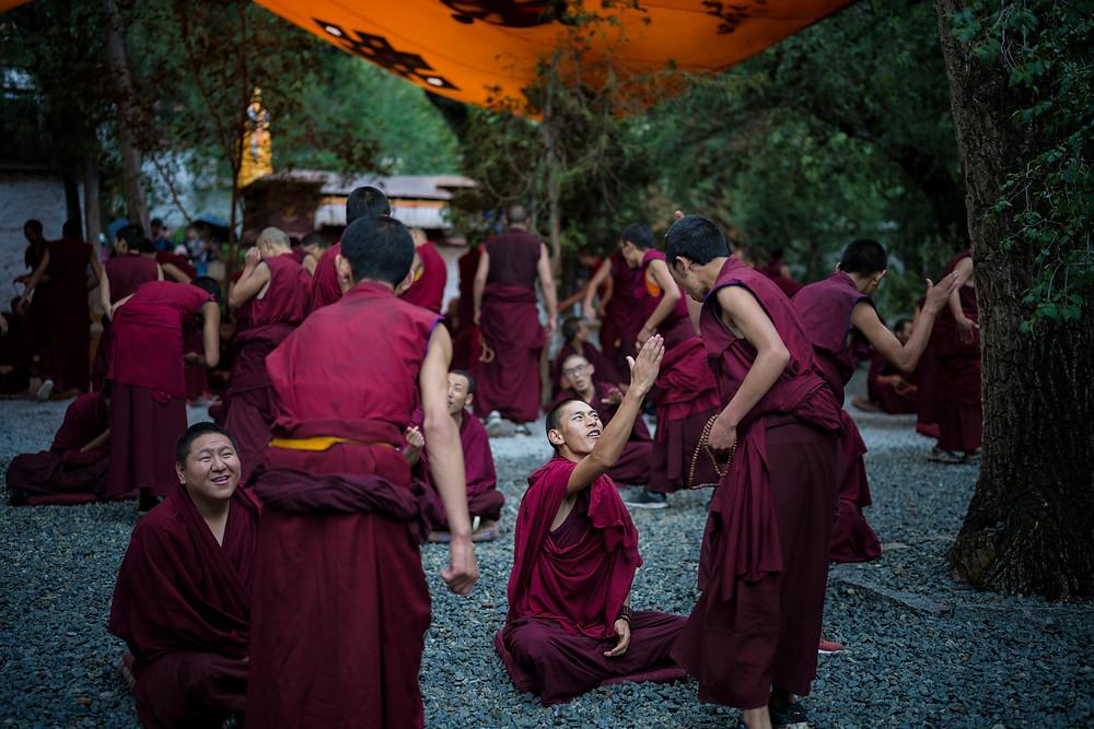 Monastero Sera, dibattito fra monaci