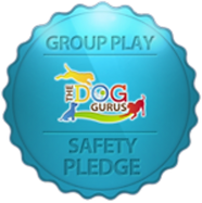 Group-play-safety-pledge.png