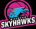 Transparent Skyhawks Logo (2).png