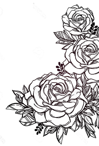 drawn-vintage-flower-line-drawn-16.png