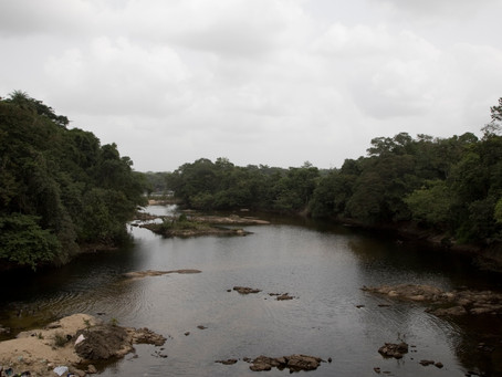 Sierra Leone - untapped potential and great opportunities