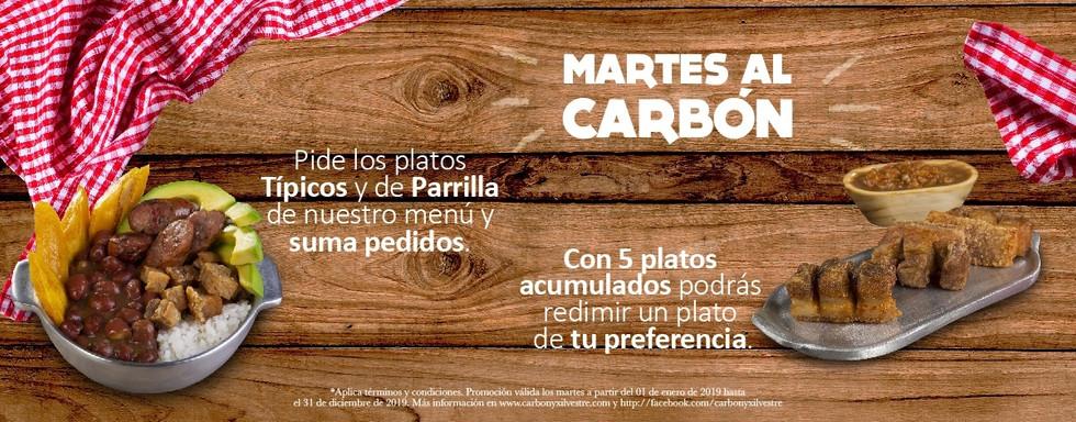 Carbon-martes.jpg