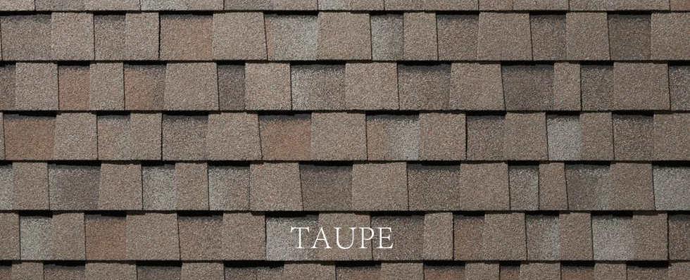 TAUPE-2.jpg