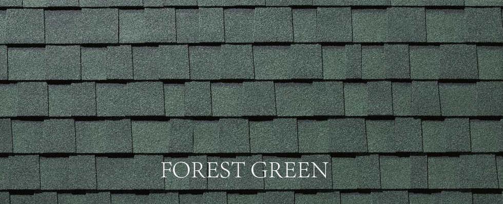 FOREST GREEN-2.jpg