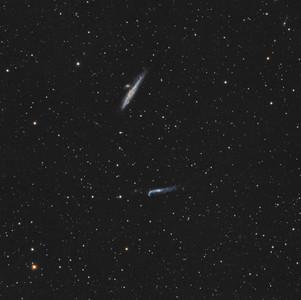 La Galaxie de la Baleine (NGC 4631)