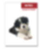 puppy prep.PNG