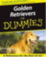golden ret for dummies.JPG