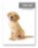 puppy unit.PNG