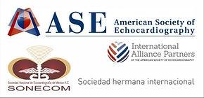 ASE INTERNATIONAL ALLIANCE PARTNERS