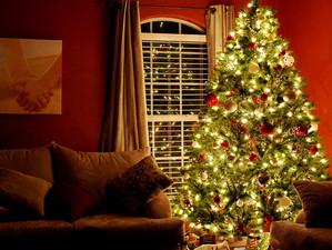 Monte sua árvore de natal de forma elegante em 10 passos.