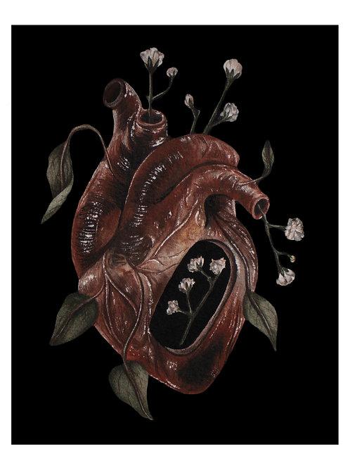 Gypsophila Heart Archival Print 5x7, 8x10