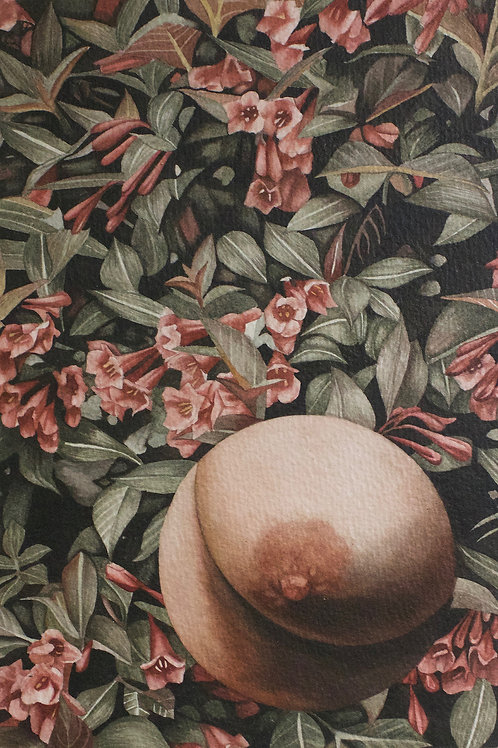 'Boob and Flowers' Archival Print