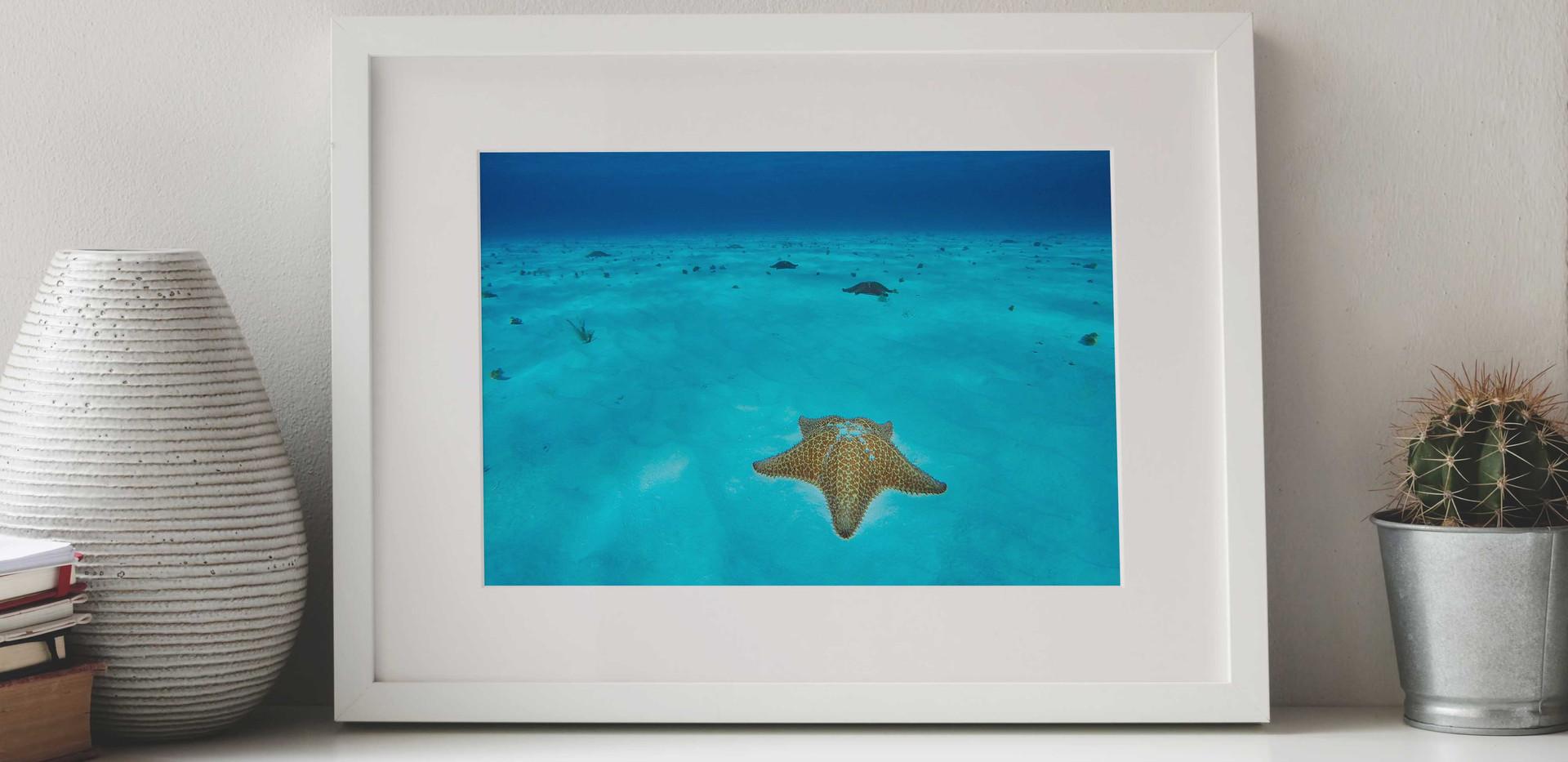 Azul caribe.jpg