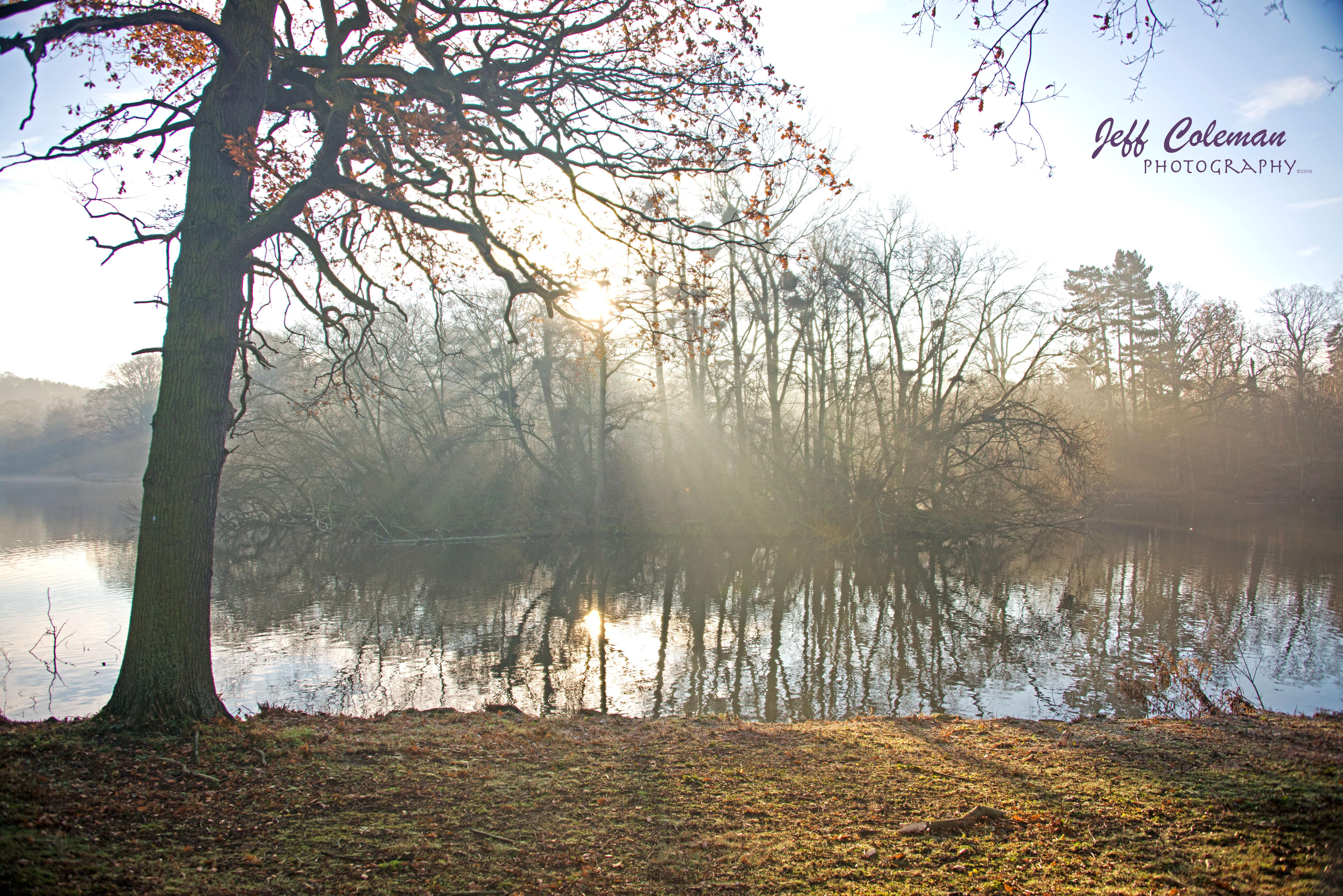 YSP lake