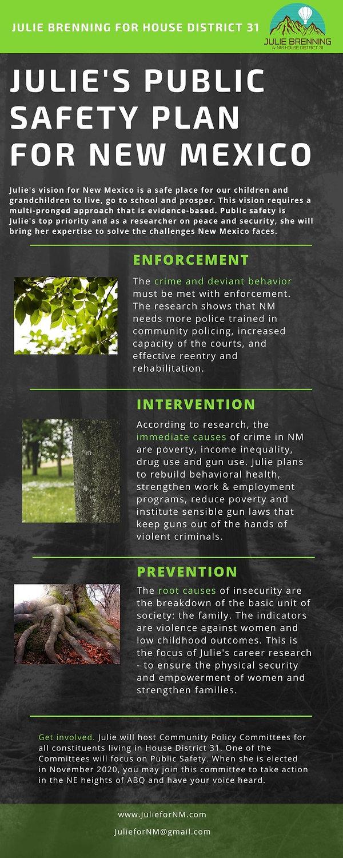 Public Safety Plan.jpg