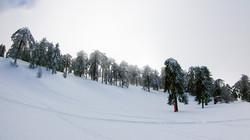 ski 17.01.19 (10 of 11)