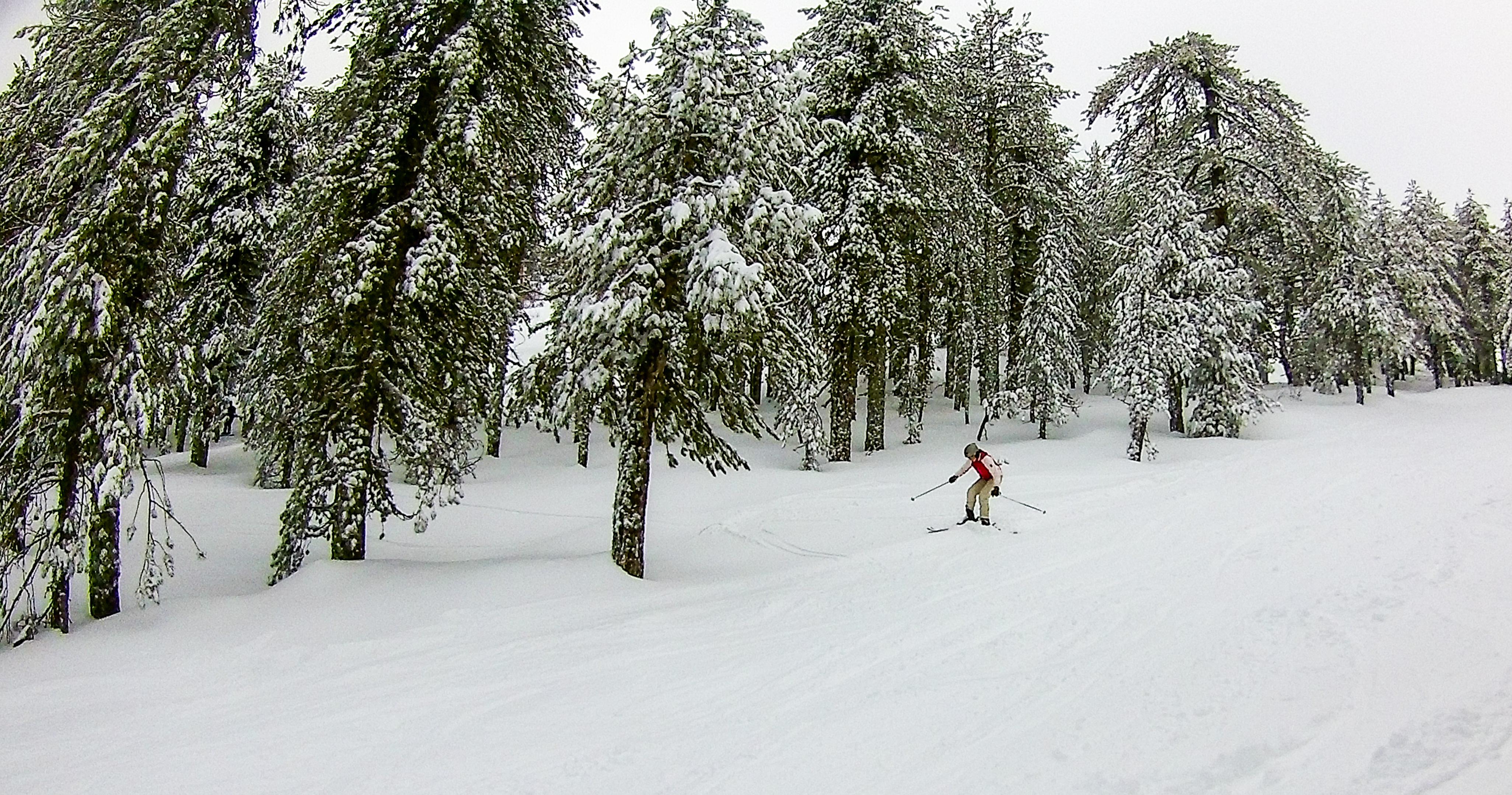 ski 17.01.19 (1 of 11)