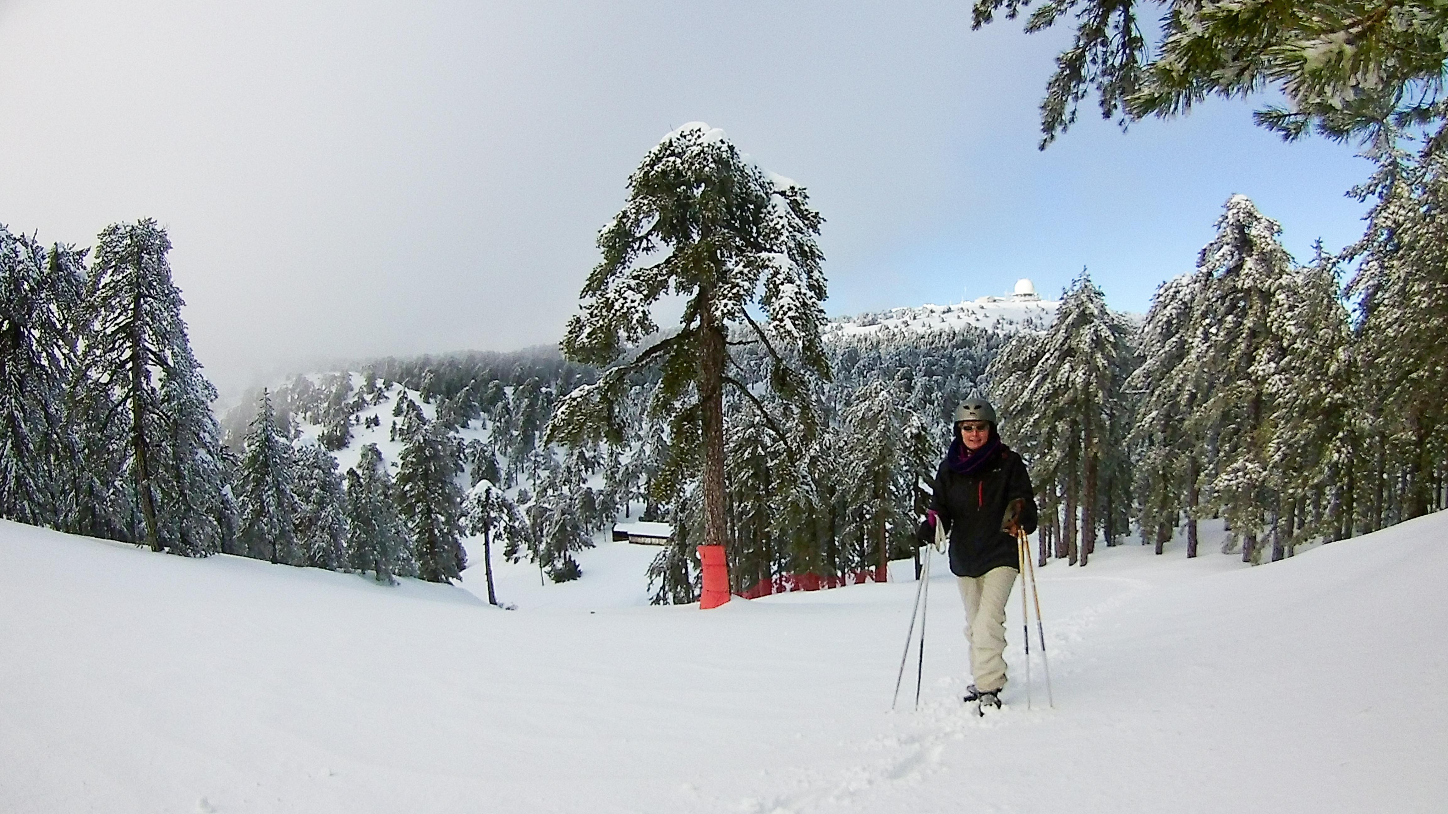 ski 17.01.19 (8 of 11)
