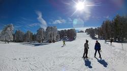 ski 11.01.19 (2 of 4)