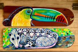 toucan possoms.jpg
