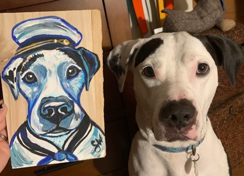 Manny Sailor Custom Pet Portrait Samm Wehman Art